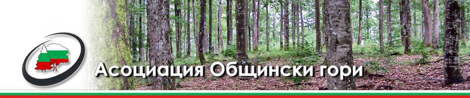 Асоциация Общински гори