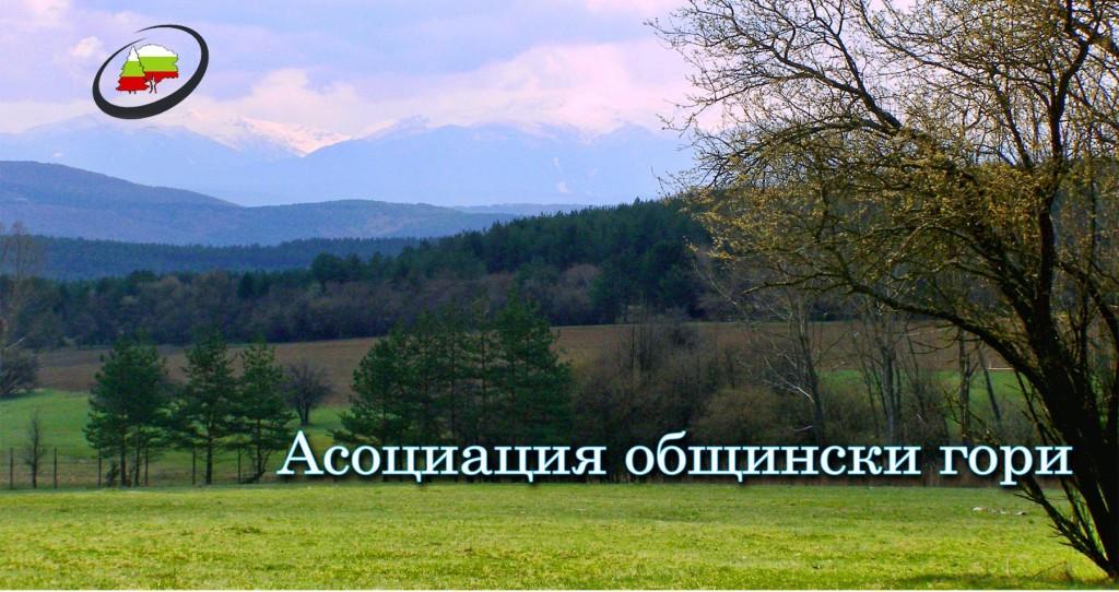 provezhda-se-11-to-obshto-sabranie-na-asotziatziya-obshtinski-gori